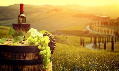 top 11 wines